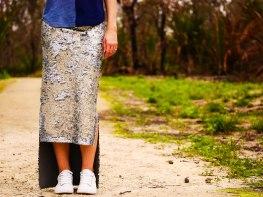 silverskirt6 (1 of 1)